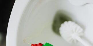 Nettoyage de WC avec du gel ecoreponsable